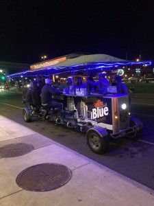 Have An Unparalleled Thanksgiving Experience With A Buffalo Pedal Tour